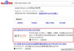 误区解读,网站降权无需看SITE命令,SEO知识点深度分析!